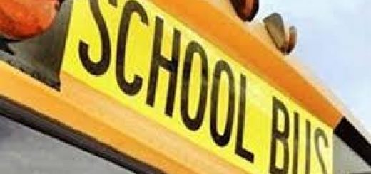 School Bus Driver Play a Vital Role in Students Safety